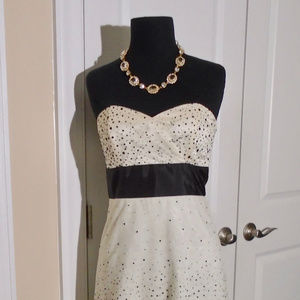 WHITE HOUSE/BM Strapless Dot Tulle Dress 2